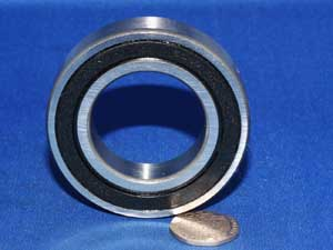 6007 2RS Sealed Bearing new