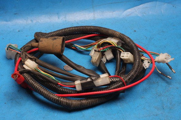 Wiring harness main Lexmoto Gladiator 125 used