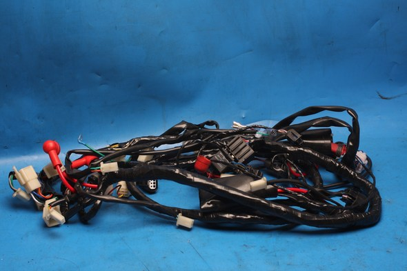 Wiring Harness Sinnis Shuttle 125EFI used