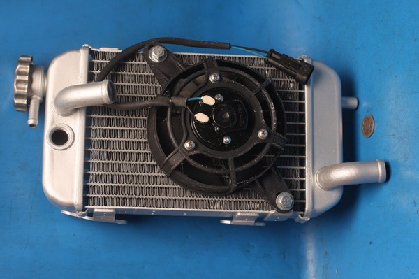 radiator & fan assy New for Trigger125